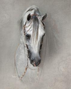 page = 235631 & load = imgFull & idx = 80 & referrer = arabian-horse-gal . Horse Drawings, Animal Drawings, Pretty Horses, Beautiful Horses, Arabic Horse, Arte Equina, Horse Artwork, Friesian Horse, Andalusian Horse