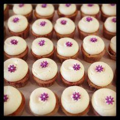 Georgetown Cupcake White Chocolate Raspberry cupcakes