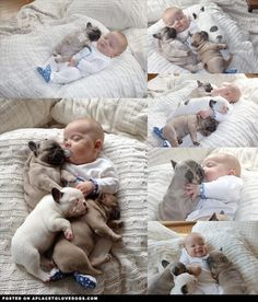 aplacetolovedogs:    Got some really sweet babies right here, all cute and cuddly and stuff. Puppies cuddling and sleeping with a baby what could be cuter?  For more cute dogs and puppies