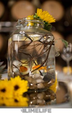 This is one we hadn& seen before: fishbowl centerpieces! The groom& only request. Nice work, Leaf it to Lexi! Goldfish Centerpiece, Fishbowl Centerpiece, Fall Wedding, Our Wedding, Dream Wedding, Wedding Ideas, Wedding Wishes, Floral Wedding, Wedding Reception