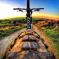 Best Cannondale Mountain Bikes to Buy in 2020 - Bikespedia Mountain Biking, Mountain Bike Brands, Best Mountain Bikes, Freeride Mtb, Mt Bike, Road Bike, Montain Bike, Mtb Trails, Downhill Bike