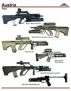 Austrian Steyr arms