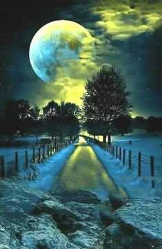 Moonlight on an icy road - chilling!- Moonlight on an icy road – chilling! Moonlight on an icy road – chilling! Moon Pictures, Nature Pictures, Pretty Pictures, Beautiful Moon, Beautiful Places, Beautiful Scenery, Shoot The Moon, Moon Photography, Photography Lighting