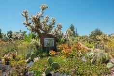 Western Colorado Botanical Gardens    Grand Junction, CO