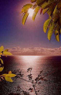 Sunrise in Perth, Australia  ♥ ♥ www.paintingyouwithwords.com