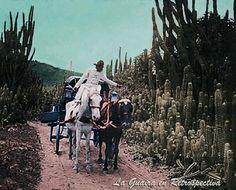 Caminos de La Guaira a Caracas. Circa 1900-1923.  Esta imagen nos las posteo el Amigo víctor José Álvare Mujica, en Blanco y negro, hace días. Y fue llevada a color por nosotros.