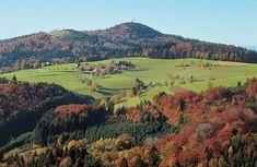 Herbst Schwarzwald Herbsturlaub