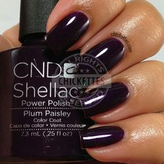 CDN Shellac: Plum Paisley - swatch by Chickettes.com.