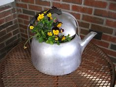 Tea kettle planter.