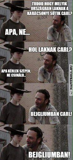 The Walking Dead Memes. Updated daily, for more funny memes check our homepage. Walking Dead Funny, Walking Dead Coral, Carl The Walking Dead, Funny Shit, Funny Jokes, Hilarious, Pokemon Go, Twd Memes, Haha