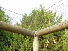 The cat enclosure is very simple to put together with fencing wire and overlapping poles placed at the top of the fence. A single wire is strung and the wire attached and then tensioned.  Old branches are placed inside the enclosure for the cats to climb on. This open at the top enclosure allows for birds to enter and escape.