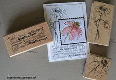 Pretty Cards, Different Colors, Stampin Up, Scrap, Colours, Tags, Crafts, Cards, Cute Cards