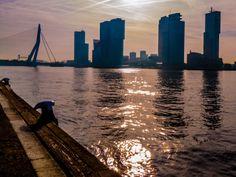 Rotterdam, Wilhelminapier, as seen from Parkkade (LUMIX GF1)