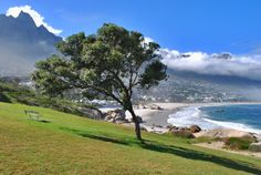 #capetown #campsbay Home Again, Cape Town, South Africa, African, Travel, Beautiful, Viajes, Destinations, Traveling
