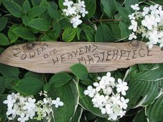 Great gifts for the gardener in your life. All driftwood signs are on sale now for the holidays.