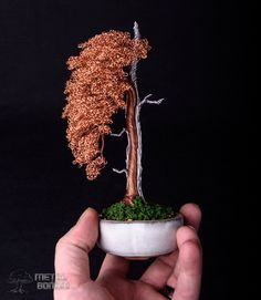 Aluminium and Copper Sharimiki in white container – Metal Bonsai Wire Tree Sculptures