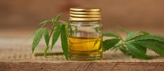 CBD Oil is used as a pain reliever for chronic diseases. Edibles Online, Our Body, Side Effects, Health And Wellness, Benefit, Cancer, Treats, Oil, Earth