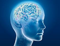 Results from a new study show indicate that bipolar patients with a history of marijuana use have better neurocognitive function than those who have never used cannabis.    The team, from The Zucker Hillside Hospital in Glen Oaks, New York, found that patients with bipolar I (BD I) disorder who used marijuana performed better on tests of attention, processing speed, and working memory than other BD 1 patients, reports Mark Cowen at News Medical.