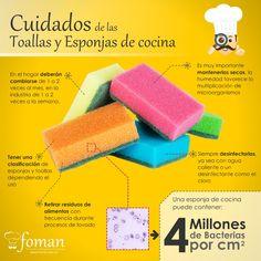¿Qué tan durables y limpias son tus esponjas de cocina?
