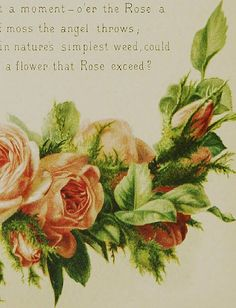 "Image from page 21 of ""The Artistic language of flowers"" (1888) 