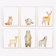 Simple, cute and ideal for the Woodland nursery - for a boy or a girl. These watercolor woodland animals will complete your nursery. There is a racoon, fox, wol