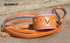 Leather collar. Made of high quality bridle leather and soft deerskin.