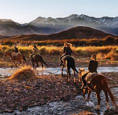 Mendoza, Argentina is a great place for outdoor activities (such as horseback riding) and to view the beautiful landscape of the country. I want to go there and go horseback riding and see the beautiful countryside.