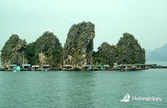 Van Gia Fishing Village, Halong Bay