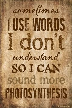 Sometimes I Use Words I Don't Understand Poster