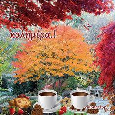 Φθινοπωρινές καλημέρες με την απίστευτη ομορφιά της φύσης!!! - eikones top