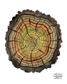 peaty log tree rings giclee print reproduction by GollyBard, $36.00
