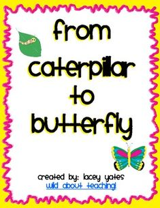 Caterpillar to Butterfly activity packet