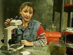 bij les 4: Micro Organismen - Het Klokhuis - YouTube (8 min)