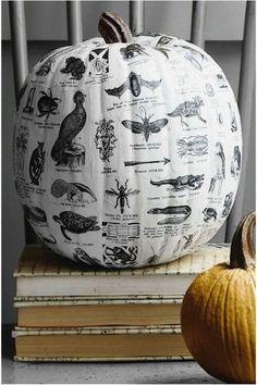 Decoupage pumpkin Halloween craft diy tutorial post via random nicole Porche Halloween, Halloween 2018, Holidays Halloween, Happy Halloween, Halloween Party, Chic Halloween, Country Halloween, Halloween Clothes, The Smashing Pumpkins