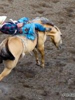 Cody Wyoming Rodeo: Wild West in the New West ... Bly Books blog