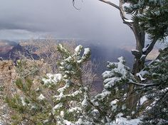 Snow in Grand Canyon. http://bertsworks.com