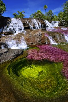 Cano Cristales RIver in the Sierra de la Macarena in Colombia. It has become covered with a bright pink endemic aquatic plant, Macarenia clavigera. (Photo by Olivier Grunewald) Beautiful Waterfalls, Beautiful Landscapes, Places To Travel, Places To See, Places Around The World, Around The Worlds, Nature Photography, Travel Photography, Beau Site