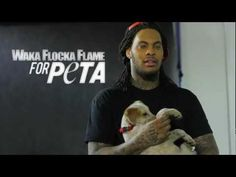 Patrice F. Spring 2015 Section 1 Waka FLocka Flame for Peta is a PSA done by PETA bring awareness to people about animal cruelty. This video is footage from behinds the scenes of a photo shoot with the rapper and his puppy. PETA helps and rescues thousands of animals every year.