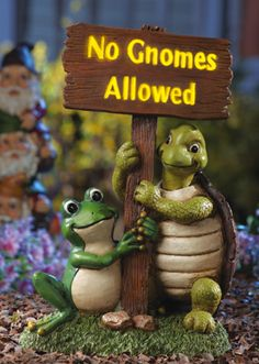 "Adorable Turtle & Frog Lighted ""No Gnomes"" Garden Statue Lawn Garden Sculpture Frog Statues, Garden Statues, Outdoor Statues, Garden Sculptures, Gnome Garden, Lawn And Garden, Panda Love, Cute Frogs, Collections Etc"