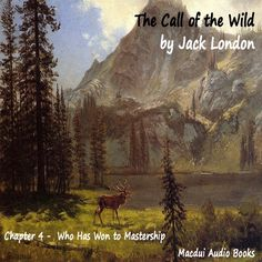 The Call of the Wild Chapter 4 - Who Has Won to Mastership - Audio Book ...