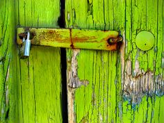 weathered wood and another favorite color - Always loved vibrant lime green.