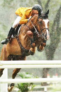 Rain or shine the show goes on. Water in your eyes and trying to count your strides with a clear run. We are equestrians and this is how it's done.