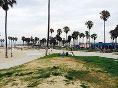 Visit Venice Beach.