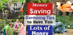 15 Money Saving Gardening Tips | Ways To Save Money In Garden