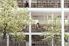 Between Books and Trees / JAJA