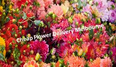 We have a wide selection of 'Get Well' flowers available on our website, and our florist also services the Royal Melbourne Hospital. If flowers don't fit the bill, you can even choose from a range of chocolates, gift hampers, teddy bears and other soft toys to properly convey your feelings.