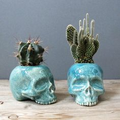 Ceramic skull planters // spring // gardening