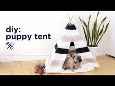 DIY: een te gekke tipitent voor je puppy - Roomed