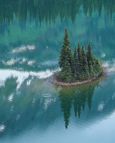 A tiny forest island sits in Azouzetta Lake near Mackenzie, BC in the Pine Pass Dawson Creek Bc, British Columbia, Waves, Canada, Island, Explore, Instagram Posts, Photography, Painting
