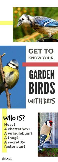 Inspire your little naturalist - get to know your garden birds with your kids  #naturelover #wildlife #birds